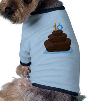 A cake with candle 10 pet t-shirt
