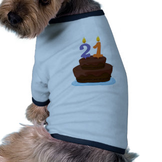 a cake with candle dog clothes