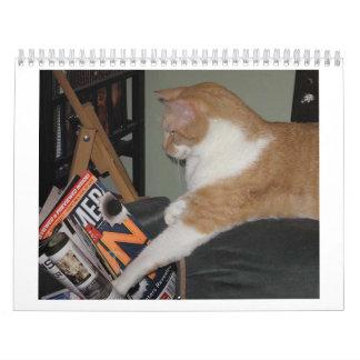 A calender of cats calendar