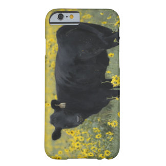 A calf amid the sunflowers of the Nebraska Barely There iPhone 6 Case