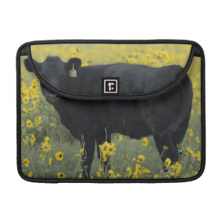 A calf amid the sunflowers of the Nebraska Sleeves For MacBook Pro