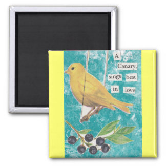 A Canary, Sings Best in Love 2 Inch Square Magnet