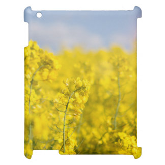 A canola field in spring iPad covers