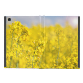 A canola field in spring iPad mini covers