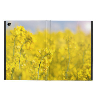 A canola field in spring powis iPad air 2 case