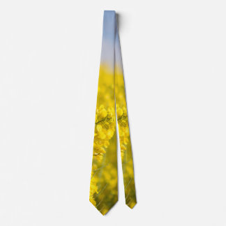A canola field in spring tie