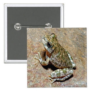 A Canyon Treefrog 2 Inch Square Button