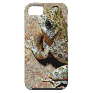 A Canyon Treefrog iPhone SE/5/5s Case