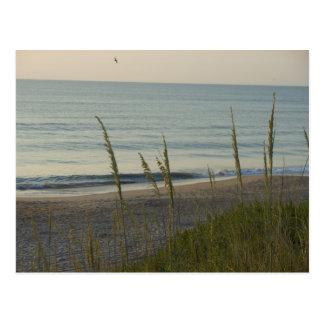 A Carolina Beach Postcard