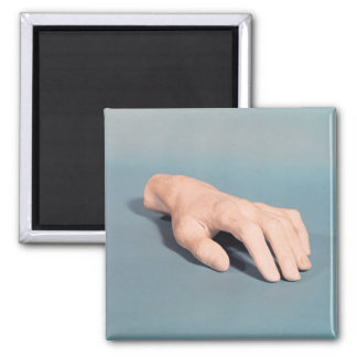 A cast of the hand of Frederic Chopin Magnet