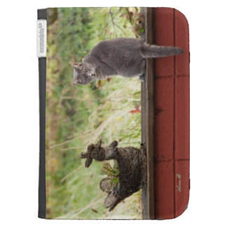A cat called Grayling Kindle Folio Cases