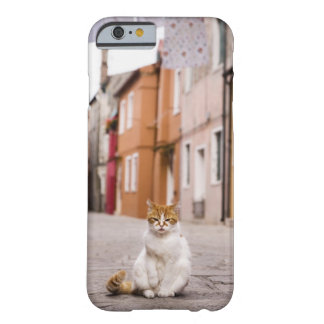 A cat in the streets of Burano, Italy.  2006. Barely There iPhone 6 Case