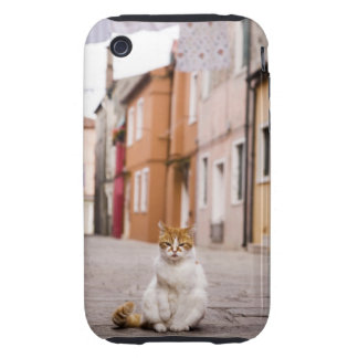 A cat in the streets of Burano, Italy.  2006. iPhone 3 Tough Cases