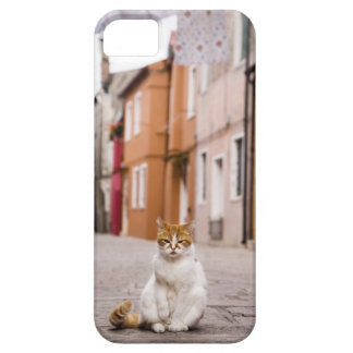 A cat in the streets of Burano, Italy.  2006. iPhone 5 Cases