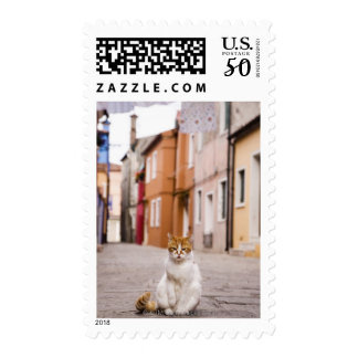 A cat in the streets of Burano, Italy.  2006. Postage