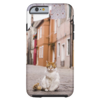 A cat in the streets of Burano, Italy.  2006. Tough iPhone 6 Case