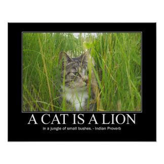 A Cat is a Lion Indian Proverb Artwork Poster