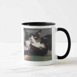 A Cat Licking It's Paw Mug