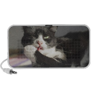 A Cat Licking It's Paw Travel Speakers