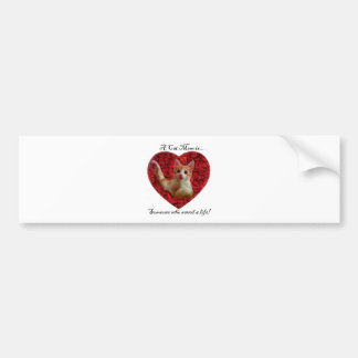A cat mom is someone who saved a life bumper sticker