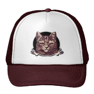 A Cat on a Hat