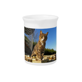A Cat on Watch Pitcher