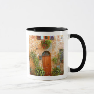 A cat seeks entrance to home in Pienza, Italy. Mug