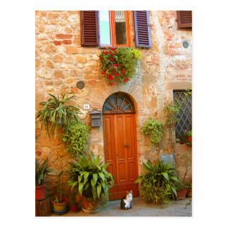 A cat seeks entrance to home in Pienza, Italy. Postcard