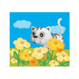A cat sitting in nature postcard
