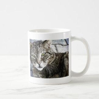 a cat taza de café