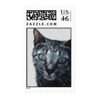 A Cat through a Dragonfly s Eyes Stamp