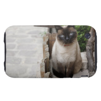 A Cat Tough iPhone 3 Cases