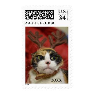 A cat wearing reindeer antlers postage