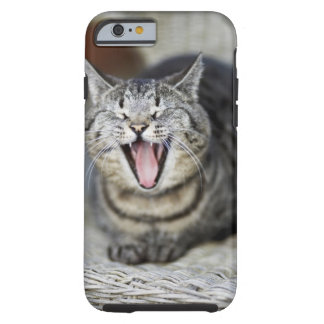A cat yawning, Sweden. Tough iPhone 6 Case