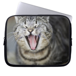A cat yawning, Sweden. Laptop Sleeve