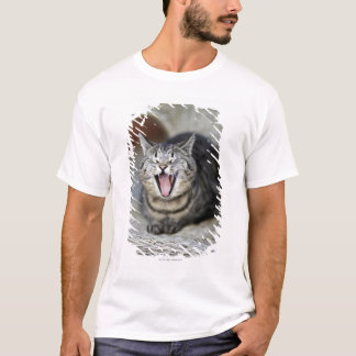 A cat yawning, Sweden. T-Shirt