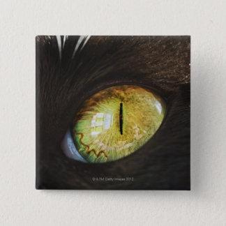 A Cat's Eye Button