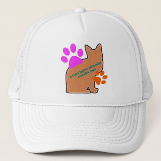 A Cats Higher Education Includes Naps Trucker Hat
