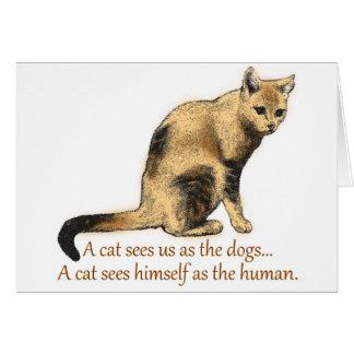 A Cat's Perceptions Card
