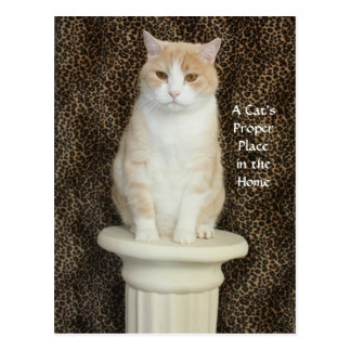 A Cat's Proper Place in the Home - 2nd Postcard