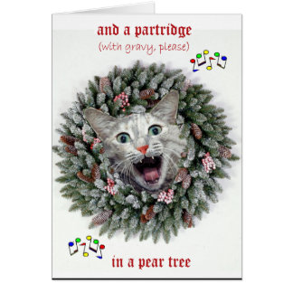 A cat's Twelve days of Christmas Greeting Card