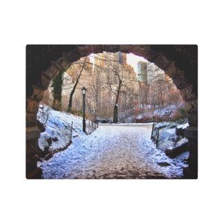A Central Park Bridge In Winter Metal Print