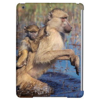 A Chacma Baboon carrying young through a river iPad Air Case