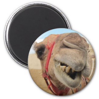 A Cheerful Camel Refrigerator Magnet