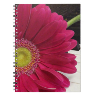 A Cheerful Song Notebook
