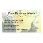 A Cheerful Yellow Daffodil Business Card Template