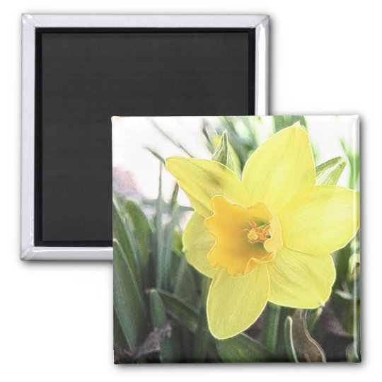 A Cheerful Yellow Daffodil Magnet