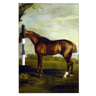 A Chestnut Racehorse by George Stubbs Dry Erase Whiteboards