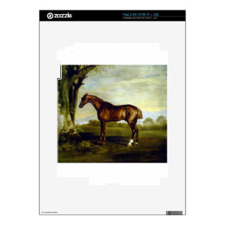 A Chestnut Racehorse by George Stubbs iPad 2 Skin