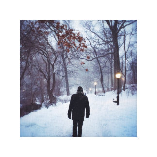 A Chilly Path In Central Park Canvas Print